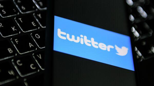 В Общественной палате оценили решение замедлить работу Twitter