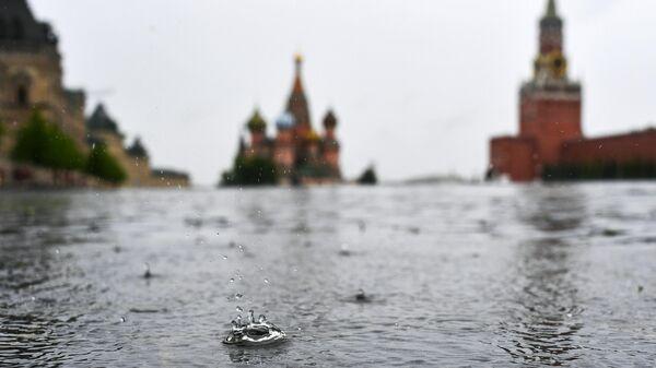 Москвичей предупредили о грозах и низком давлении