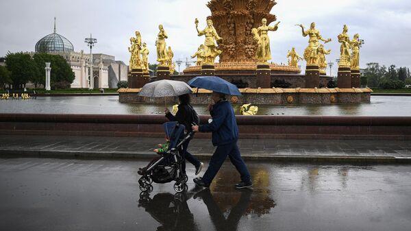В Москве в субботу пройдут дожди с мокрым снегом