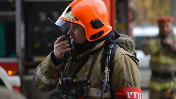 В Приамурье пожарные спасли новорожденного жеребенка