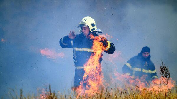В Омской области полдеревни сгорело из-за лесного пожара
