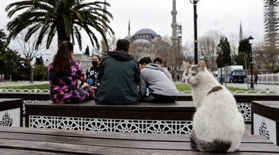 Зеленский отметил важность повысить турпоток в Турцию