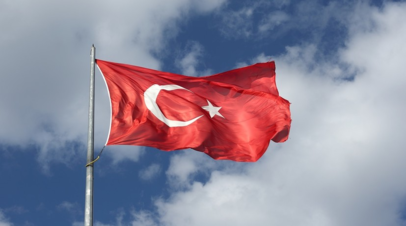 В Турции заявили о захвате одного из лидеров ИГ