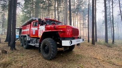 В России за сутки потушили 124 лесных пожаров