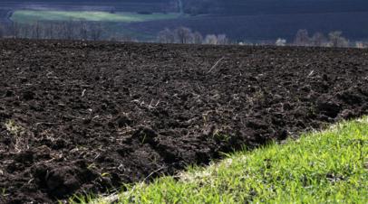 В Раде анонсировали сбор подписей за референдум против рынка земли на Украине