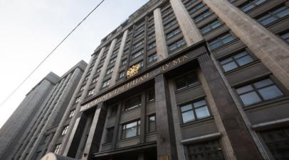 В Госдуме осудили просьбу экологов в ФРГ отозвать разрешение по «Северному потоку — 2»