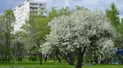 Синоптик рассказала, когда в Свердловской области наступит весенняя погода