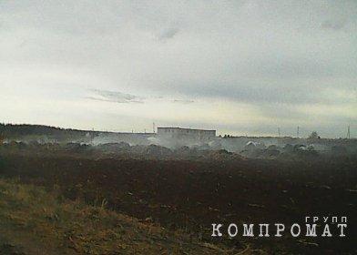 Российские школьницы сожгли ферму ради видео для TikTok