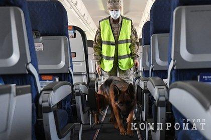 Генерал ФСБ назвал труднообъяснимыми действия Лукашенко в деле самолета Ryanair