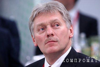 Песков допустил провокации во время праймериз «Единой России»