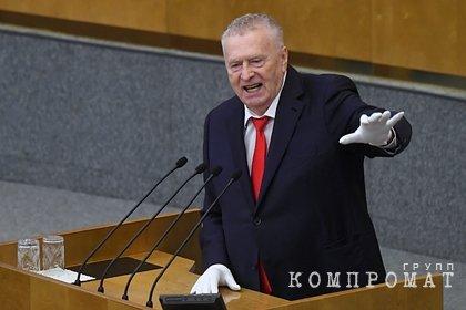 Жириновский призвал ограничить количество детей в семьях