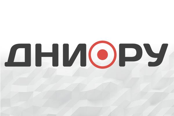 Названа неожиданная причина наплыва мигрантов в России