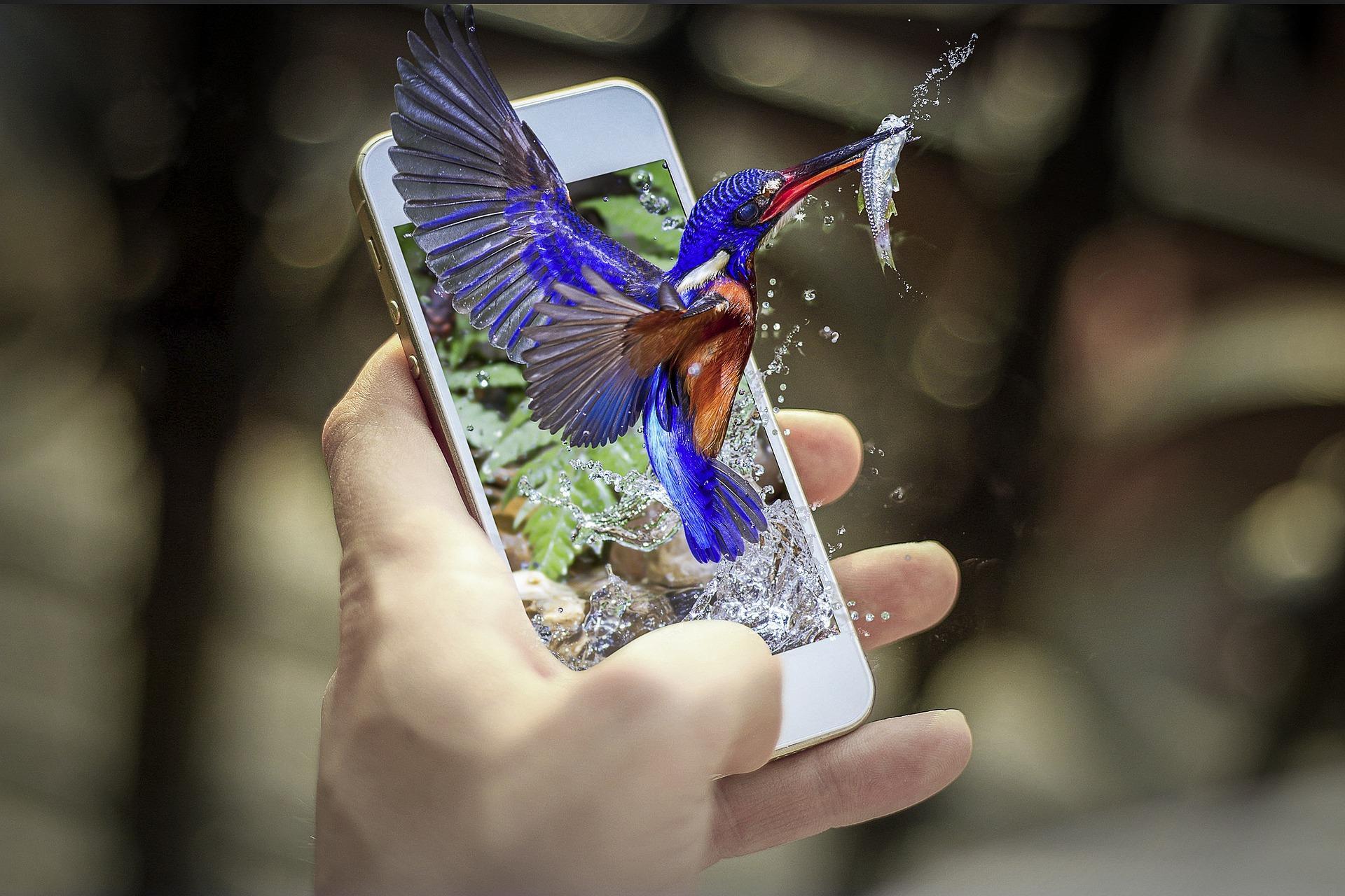Хотите компактные смартфоны? Redmi даёт надежду