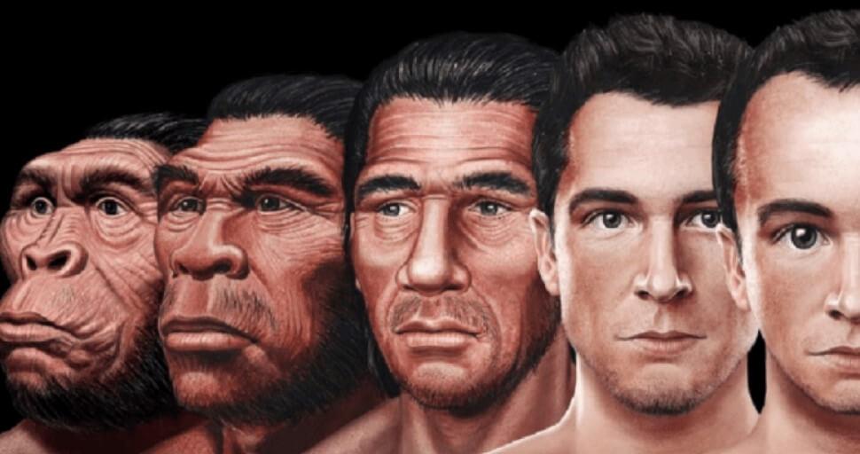 Люди начали эволюционировать быстрее, но гены тут ни при чем