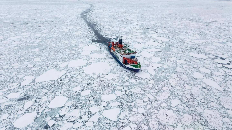 Лед в прибрежных районах Арктики стал вдвое тоньше. Чем это грозит?