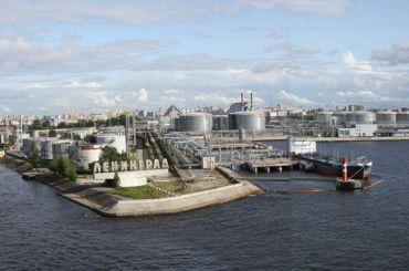 Большой порт Петербурга предложили перенести в Усть-Лугу