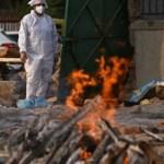 В Индии на фоне коронавируса распространилась грибковая инфекция