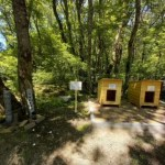Уличные будки и кормушки для бродячих животных появились в Ставрополе