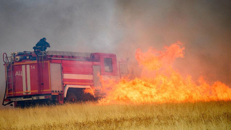 Минприроды обратилось в Генпрокуратуру из-за занижении двумя регионами данных по пожарам