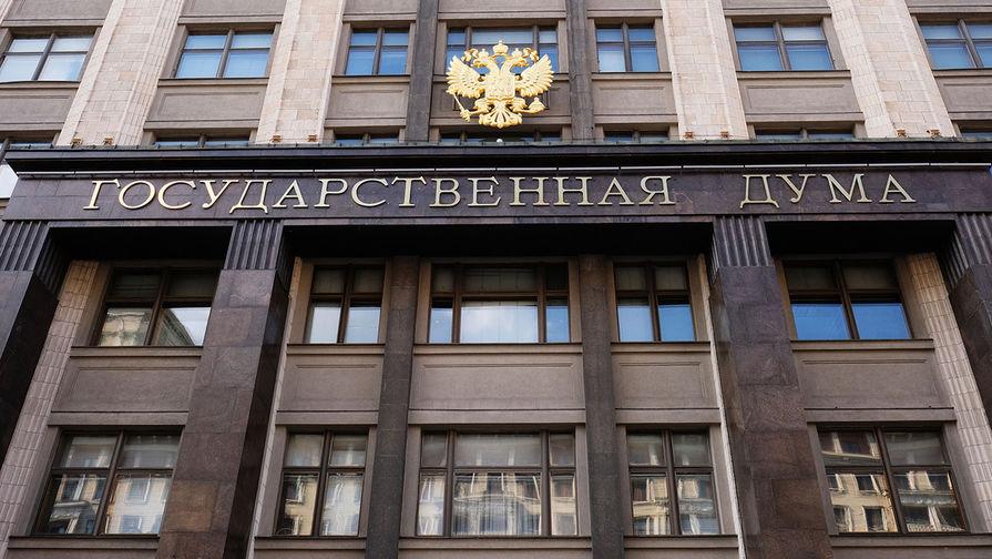 В Госдуме поддержали идею об увеличении материнского капитала