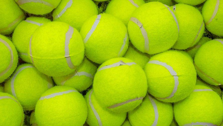 Отец избитой теннисистки высказался об обвинениях дочери в адрес тренера
