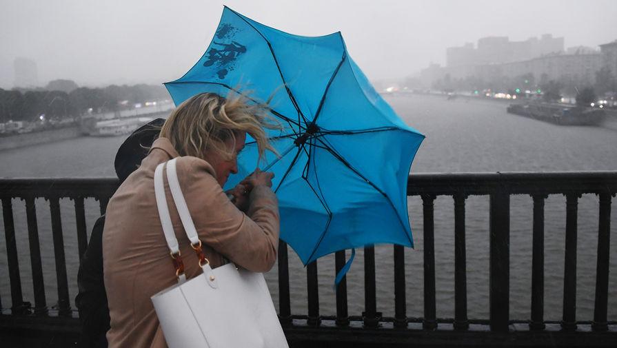 Сильный ветер повалил 20 деревьев и повредил 12 автомобилей в Москве