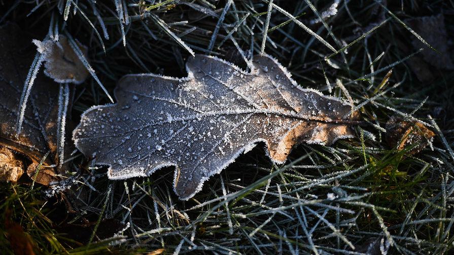 В Москву вернутся снег и заморозки