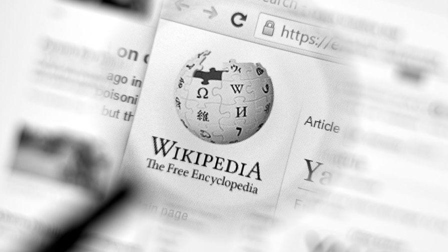 В Госдуме объяснили, почему российская 'Википедия' не станет иноагентом