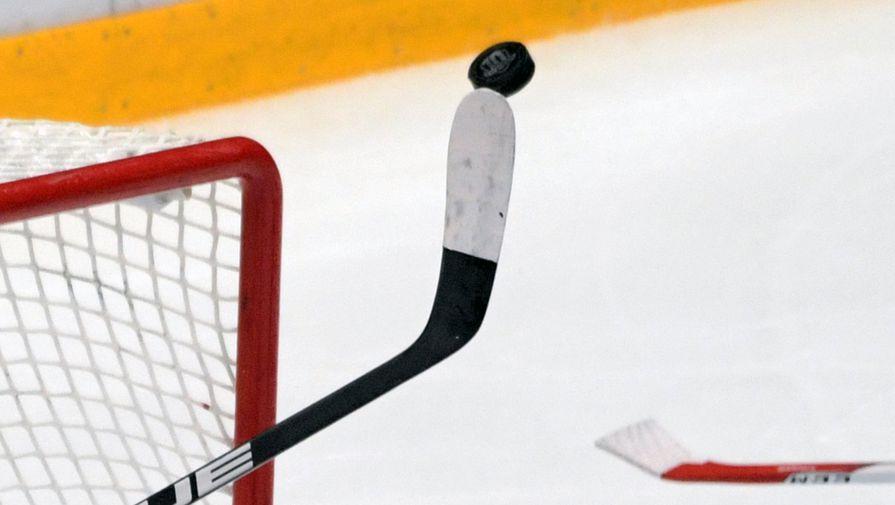 Багаж сборной Украины по хоккею был потерян в аэропорту Любляны