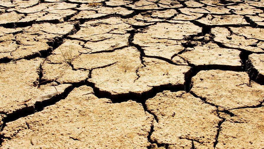 В Гидрометцентре предупредили об опасности летней засухи
