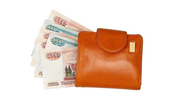 В России хотят ввести минимальный гарантированный доход