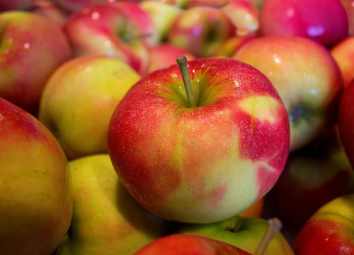 В Минсельхозе объяснили, когда страна обеспечит себя фруктами и ягодами