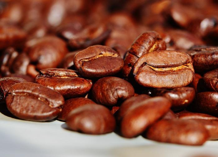 Экологи прогнозируют исчезновение кофе в ближайшем будущем
