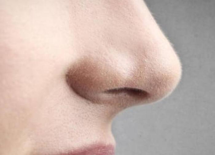 Почему у людей вырастает длинный нос?