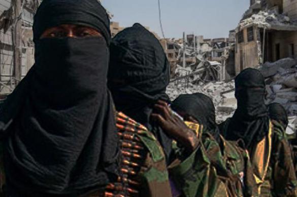 Редакция 'Новой газеты' вновь помогает террористам