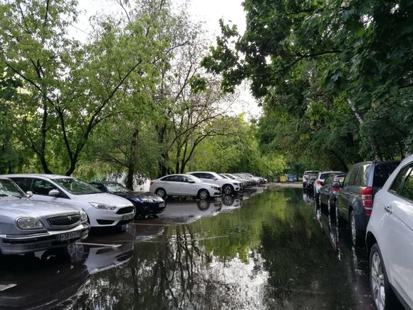 Синоптики рассказали о погоде в Москве в праздничные выходные