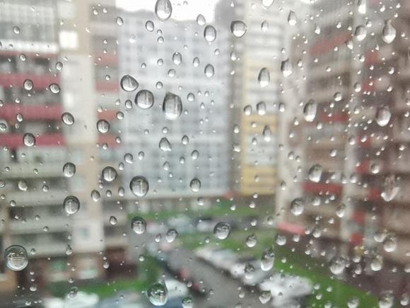 В Петербурге плюс шестнадцать и дождь