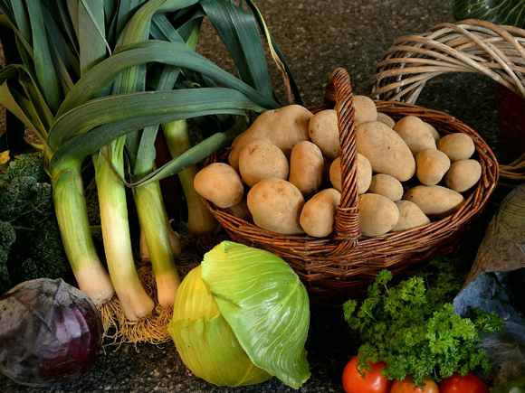 Дачникам раскрыли секрет хорошего урожая овощей на скудной почве