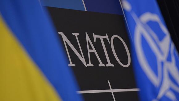 В Киеве хотят повышения боеготовности войск НАТО из-за «скопления российских войск»