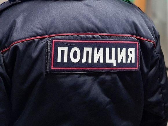 Россиянка сообщила о бомбе в багаже во время регистрации в аэропорту Москвы