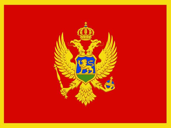 Черногория попросила Россию возобновить авиасообщение