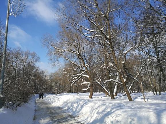 Москвичи пережили самую морозную ночь за последние 70 лет