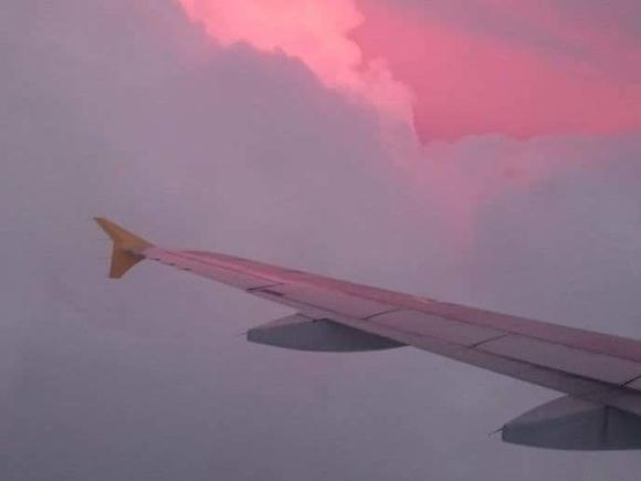 В ХАМАС опровергли причастность к «минированию» самолета Ryanair
