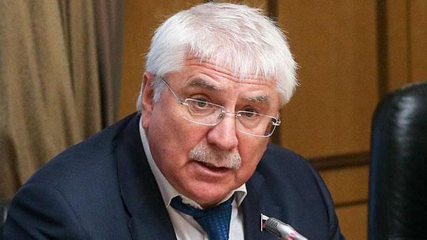В Госдуме ответили на заявление ФРГ о «росте вызовов» из-за России