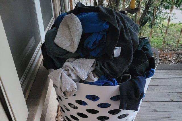 Жительнице Техаса подбросили корзину грязного белья. Ну и чьи это футболки? А носки чьи! Все-таки узнали: владельца удалось приманить чистыми штанами