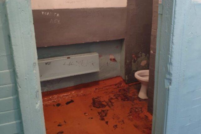 Domestos объявил конкурс худших школьных туалетов. И открыл портал в ад