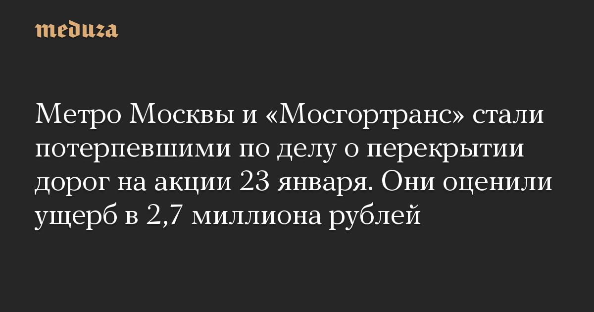Метро Москвы и «Мосгортранс» стали потерпевшими по делу о перекрытии дорог на акции 23 января. Они оценили ущерб в 2,7 миллиона рублей