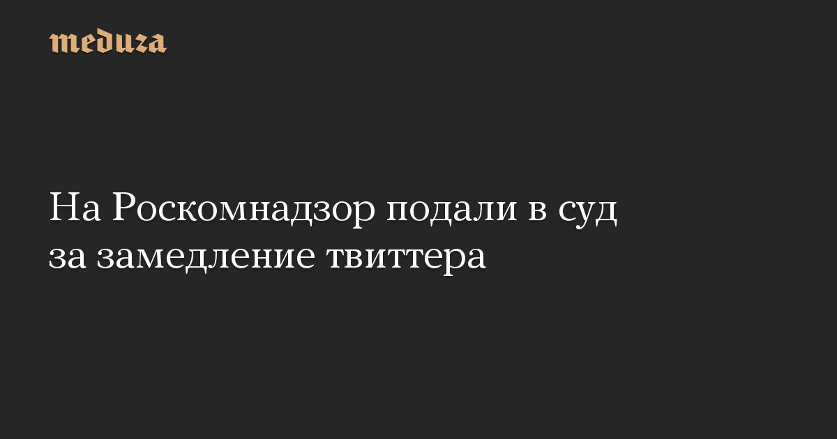 На Роскомнадзор подали в суд за замедление твиттера