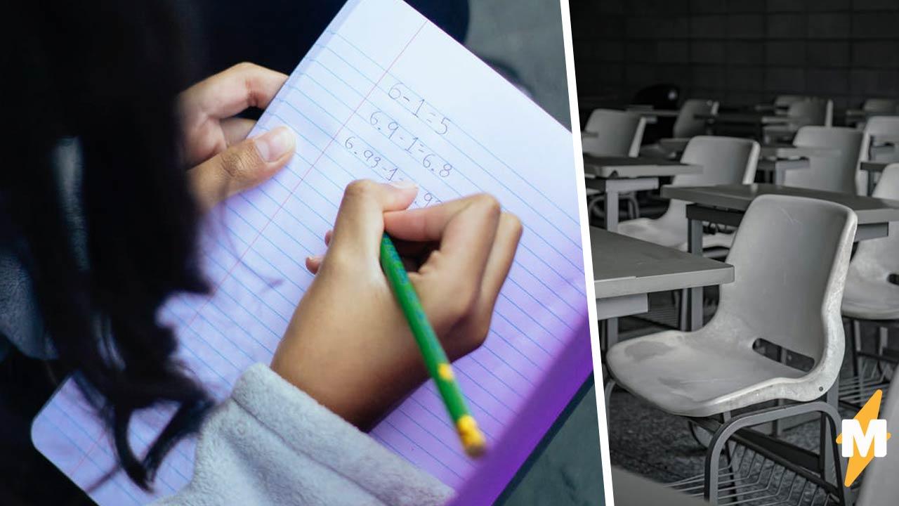 Школьница учится с козлами, но для одноклассников это не оскорбление. Фото класса снимает все вопросы