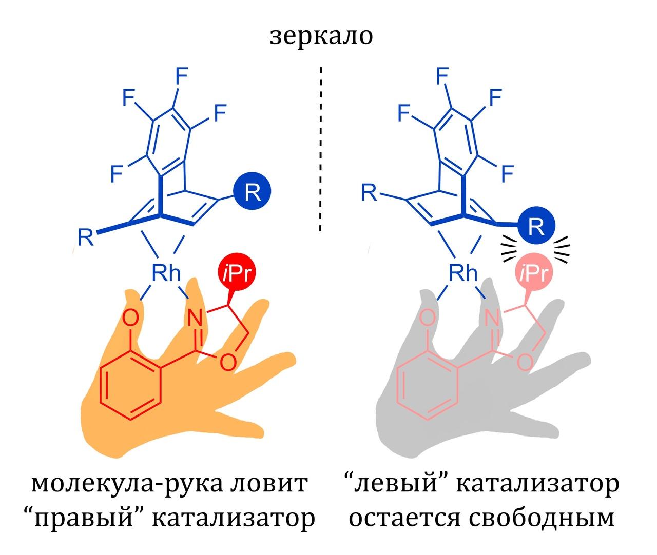 Молекула-рука поможет сортировать зеркальные изомеры